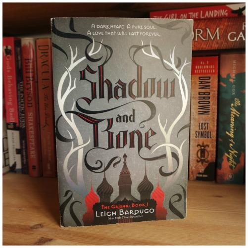 february 2017 book review american gods shadow and bone scarlet lunar chronicles grisha rebel of the sands